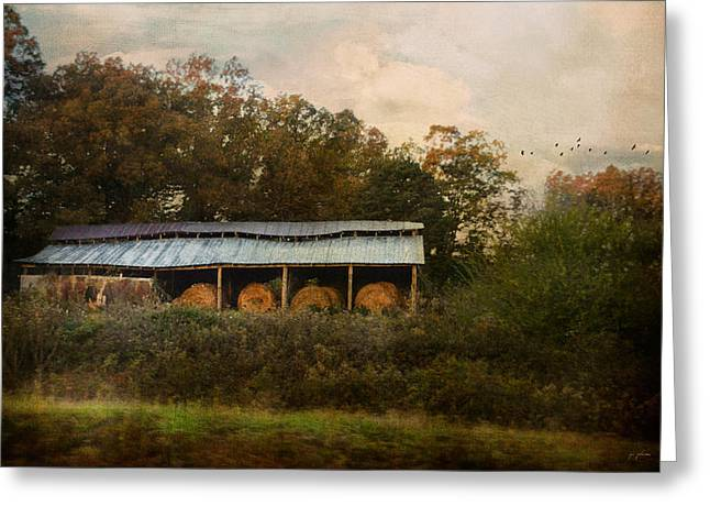 A Barn For The Hay Greeting Card by Jai Johnson