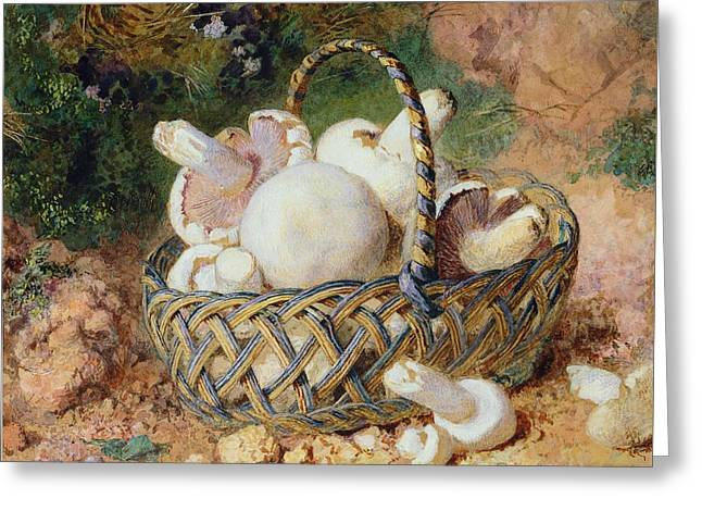 A Basket Of Mushrooms, 1871 Greeting Card by Jabez Bligh