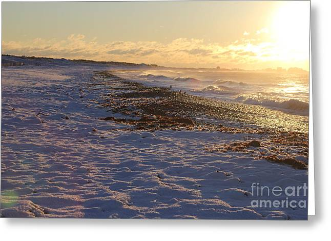 A Beachy Sunrise In The Winter Greeting Card