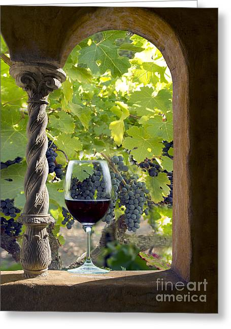 A Beautiful Day At The Vineyard Greeting Card by Jon Neidert