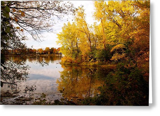 A Beautiful Day Greeting Card by Jocelyne Choquette