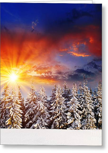 A Beautiful Sunset In The Winter Greeting Card by Boon Mee