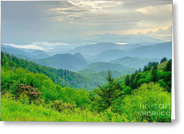 A Beautiful View Greeting Card by Bob and Nancy Kendrick