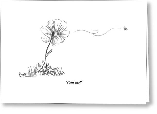 A Bee Flying Away From A Daisy After Pollination Greeting Card