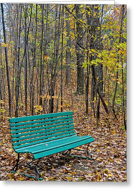 A Bench Nowhere... Greeting Card by Celso Bressan
