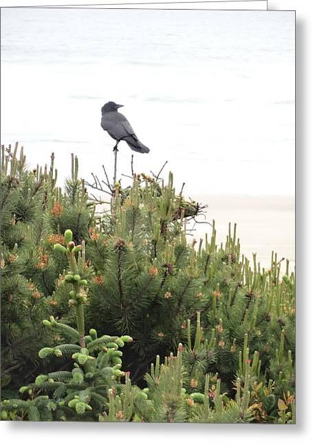 A Bird's Perch Greeting Card by Lizbeth Bostrom