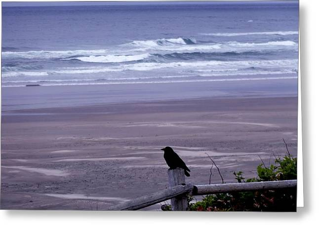 A Bird's View Greeting Card by Lizbeth Bostrom