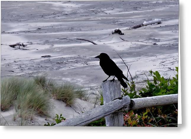 A Bird's Wait Greeting Card by Lizbeth Bostrom