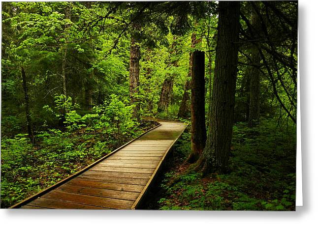 A Boardwalk To Paradise Greeting Card by Jeff Swan