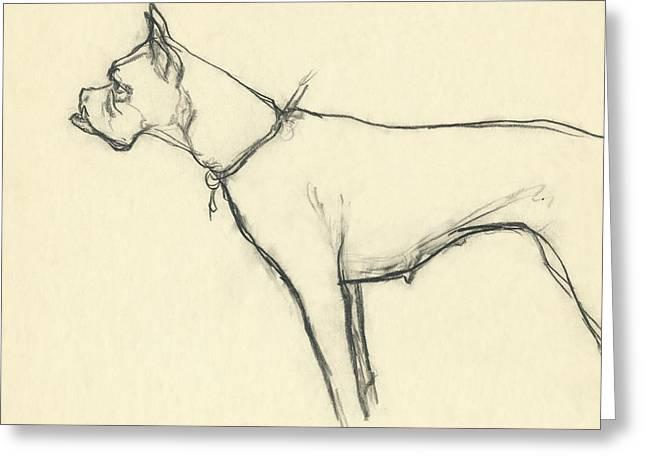 A Boxer Dog Greeting Card by Carl Eric Erickson