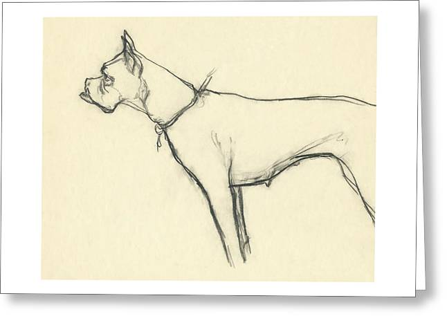 A Boxer Dog Greeting Card