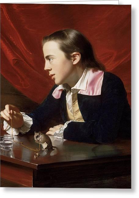A Boy With A Flying Squirrel. Henry Pelham Greeting Card by John Singleton Copley