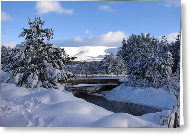 A Bridge In The Snow Greeting Card by Jacqi Elmslie
