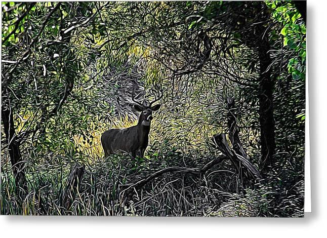 A Buck Digital Art Greeting Card