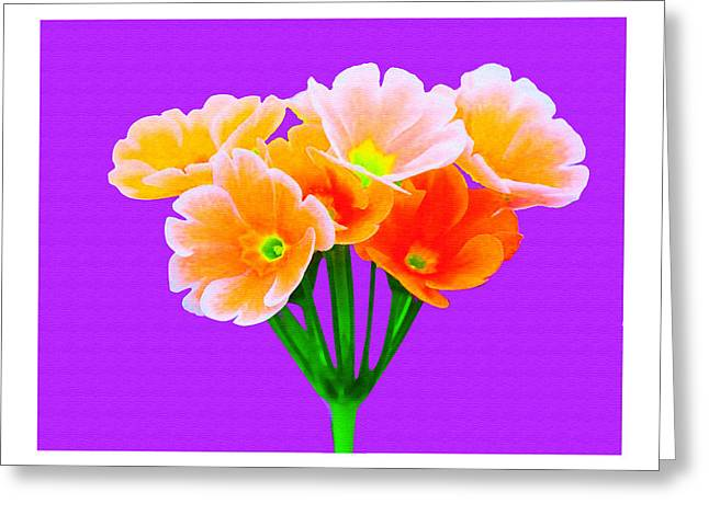 A Bunch Of Beautiful Flowers Greeting Card by Ck Gandhi
