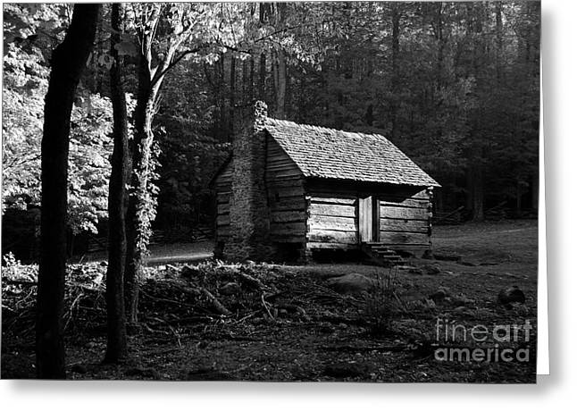 A Cabin In The Woods Bw Greeting Card by Mel Steinhauer