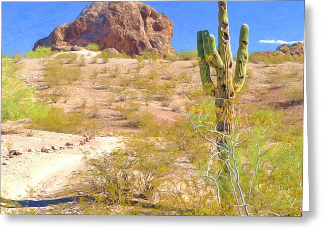 A Cactus In The Arizona Desert Greeting Card