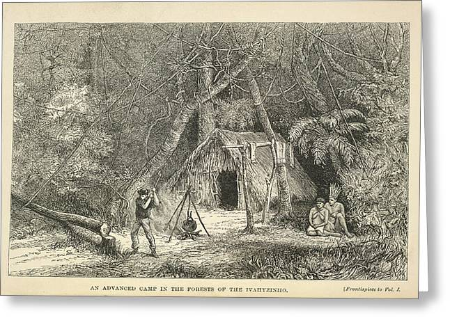 A Camp In The Forest Greeting Card