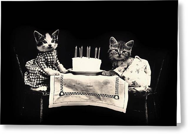 A Cat Birthday Greeting Card by Mountain Dreams