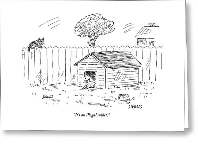A Cat Sits In A Doghouse Greeting Card