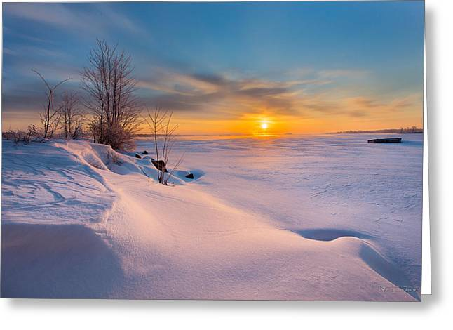 A Celebration Of Snow Greeting Card
