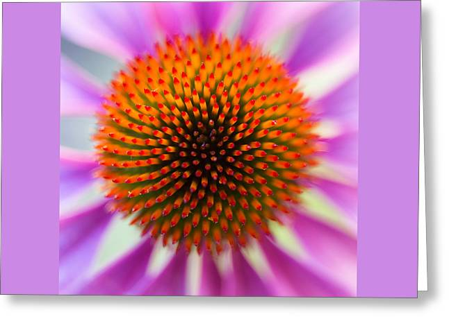 A Circle In A Square Greeting Card