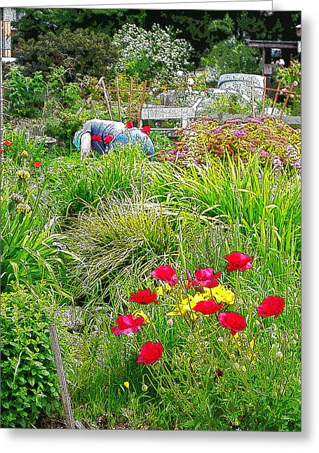 A City Garden Greeting Card by David Trotter