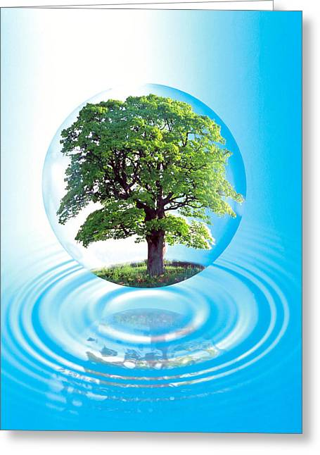 A Clear Sphere With A Full Tree Floats Greeting Card