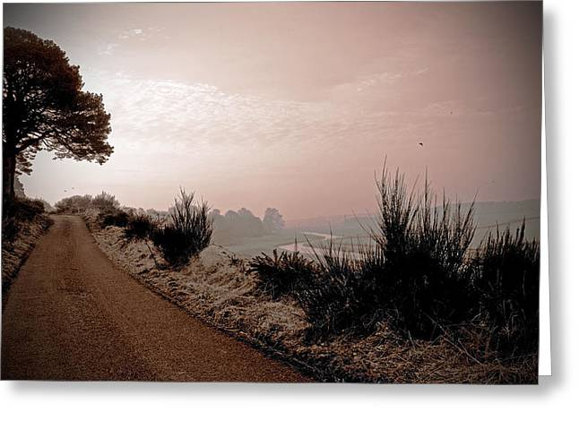 Greeting Card featuring the photograph A Cold And Frosty Morning by Liz  Alderdice