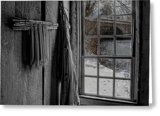 A Cold Day Greeting Card by Robin-lee Vieira