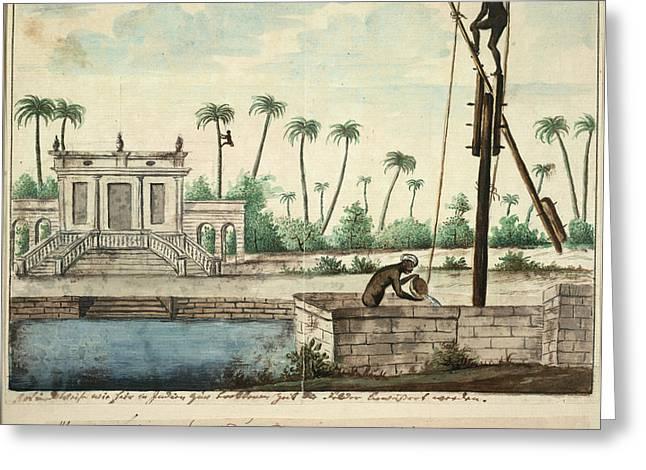 A Colonial Garden Greeting Card