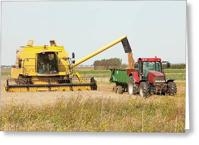 A Combine Harvester Greeting Card by Ashley Cooper