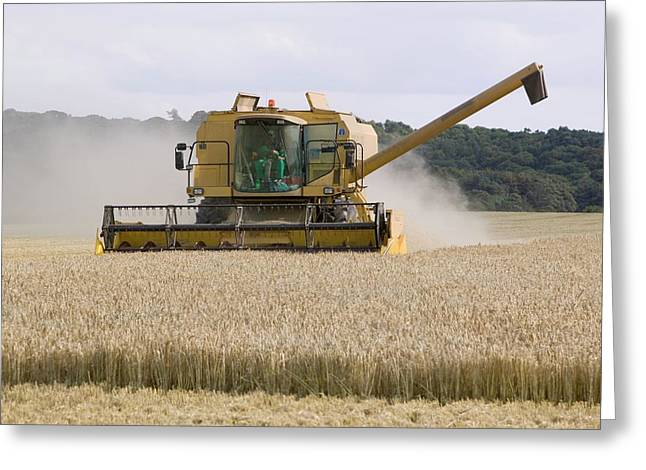 A Combine Harvester In Weybourne Greeting Card