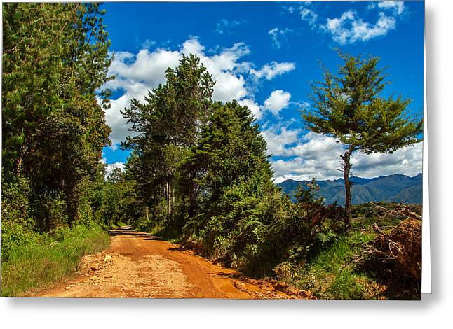 A Country Road In Colombia. Greeting Card by Jess Kraft