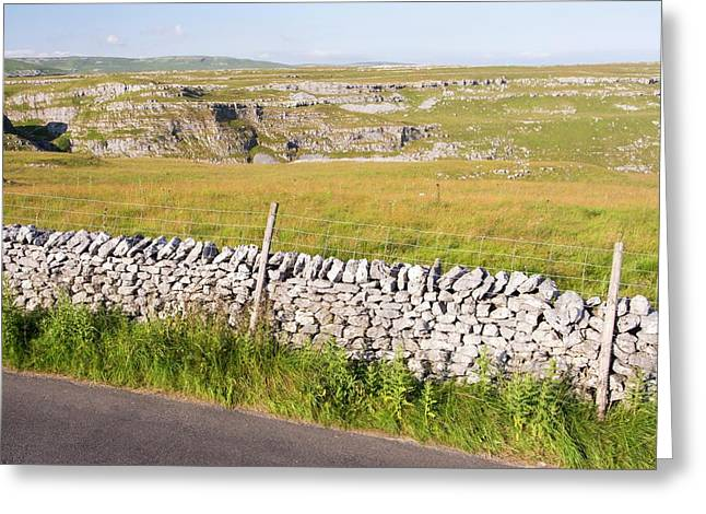 A Country Road Out Of Malham Greeting Card by Ashley Cooper