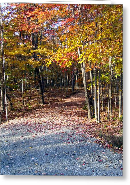 A Courtry Lane In Autumn Greeting Card