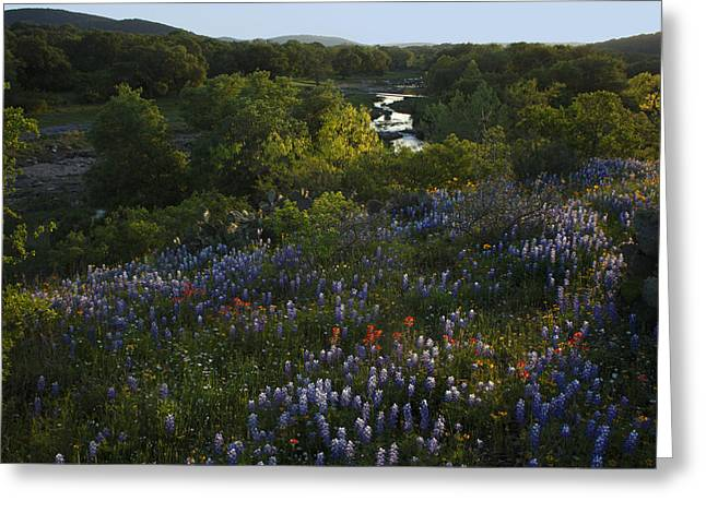 Greeting Card featuring the photograph A Creek In Llano County  by Susan Rovira