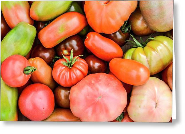 A Crop Of Varieties Of Tomato Greeting Card by Photostock-israel