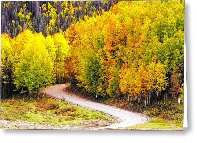 A Curve In The Road Greeting Card