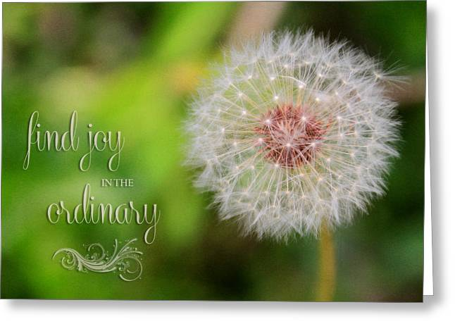 A Dandy Dandelion With Message Greeting Card