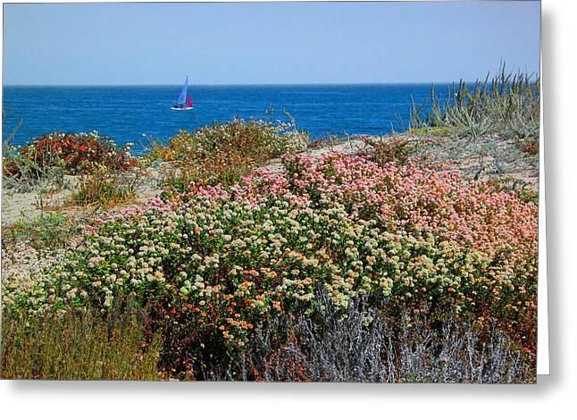 A Day At The Beach Greeting Card by Derek Dean