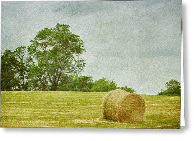 A Day At The Farm Greeting Card by Kim Hojnacki