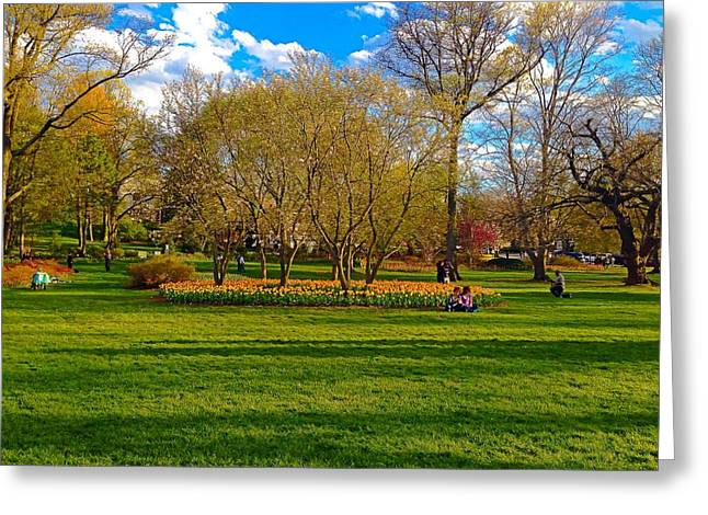 A Day In The Park Greeting Card