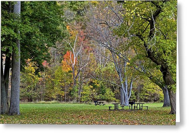 A Day In The Park Greeting Card by Starving  Artist