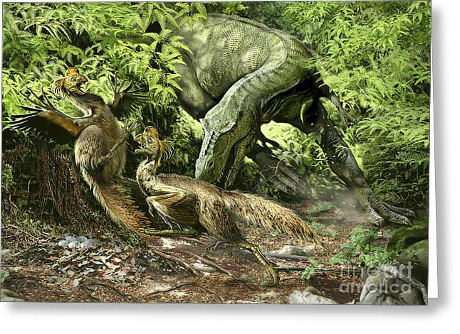 A Deadly Alioramus Suprises A Pair Greeting Card by Jan Sovak