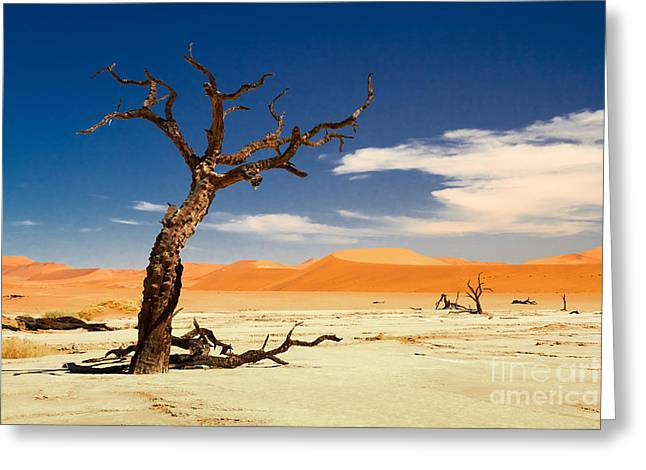 A Desert Story Greeting Card by Juergen Klust