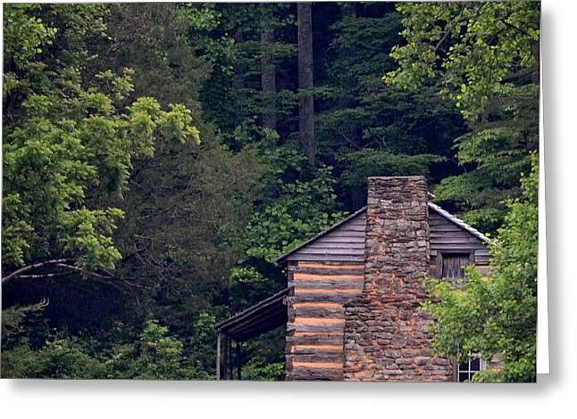 A Different View Of A Mountain Cabin Greeting Card by Eva Thomas