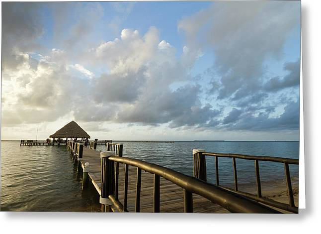 A Dock And Palapa, Placencia, Belize Greeting Card by William Sutton