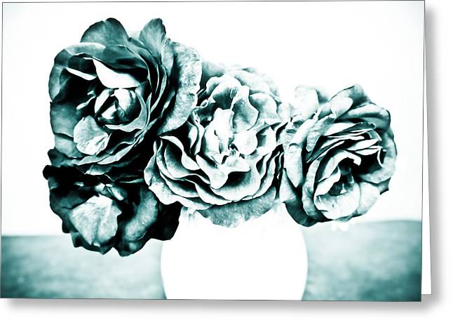 A Dream Of Roses Greeting Card by Ronda Broatch