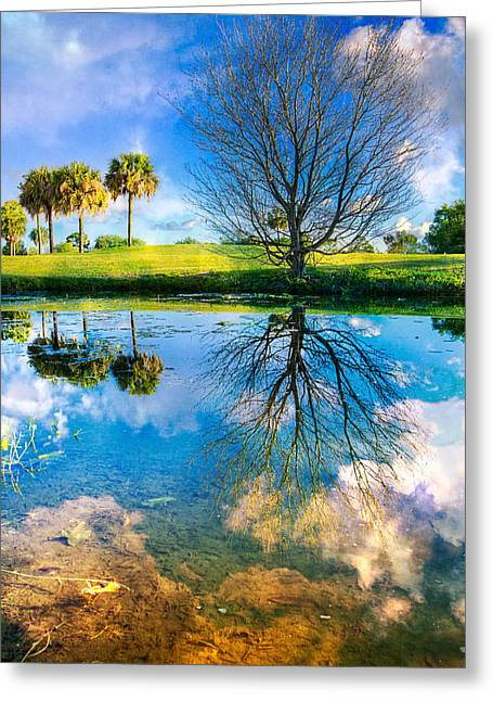 A Dreamy Day Greeting Card by Debra and Dave Vanderlaan